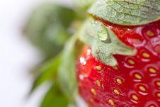 Free Macro Of Strawberry Royalty Free Stock Photo - 8176725