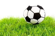 Free Soccerball On The Grass Stock Photography - 8177242