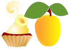 Free Apricot Dessert Royalty Free Stock Photography - 8177387