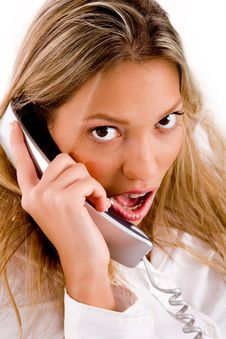 Free Close Up Of Manager Busy On Phone Stock Photos - 8180583