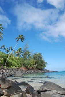 Free Tropical Paradise Royalty Free Stock Photos - 8180888
