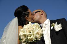 Free Wedding Kiss Stock Photos - 8182433