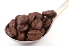 Free Coffee Beans With Spoon Stock Photo - 8184410