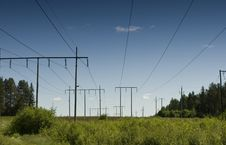 Free Powerline In The Woods Royalty Free Stock Photography - 8189557