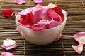 Free Red Petals Stock Photos - 8195123