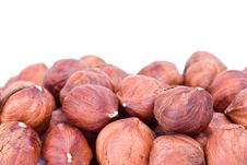 Free Some Hazelnuts Stock Photography - 8190102