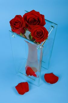 Free Three Red Roses In The Vase Royalty Free Stock Image - 8190156
