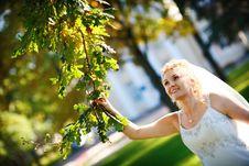 Free Happy Bride And Oak Tree Royalty Free Stock Photos - 8190278