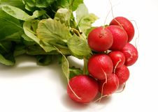 Free Radishes Royalty Free Stock Photo - 8192235
