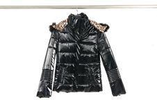 Free Fashion Clothing Royalty Free Stock Images - 8192379