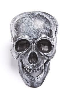 Free Skull Stock Photo - 8192830