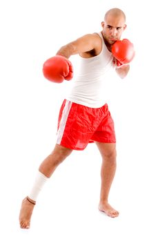 Free Muscular Man In Punching Pose Royalty Free Stock Photo - 8195965