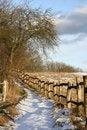 Free Winter Path Stock Photo - 827330