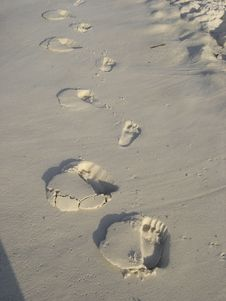 Free Footprints Stock Image - 821821