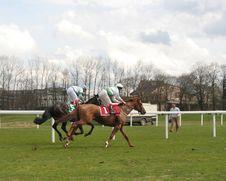 Free Galloping Royalty Free Stock Photos - 822188