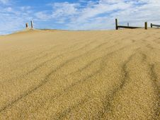 Free Sand Dune Stock Photography - 826312