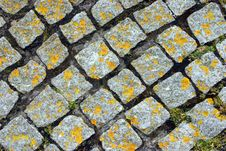 Free Cobbles Stock Images - 828784