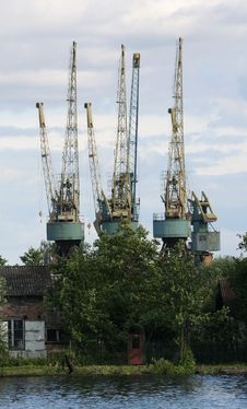 Free Cranes Royalty Free Stock Photo - 829755