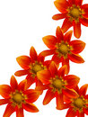 Free Flowers Decorative Royalty Free Stock Photography - 8206917
