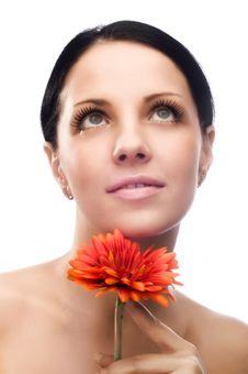 Free Close-up Of Beautiful Face Stock Photos - 8204023