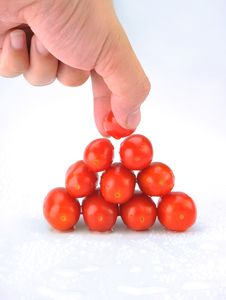 Free Small Tomatoes Stock Images - 8205594