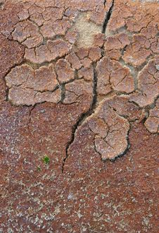 Free Drought Royalty Free Stock Photos - 8205868
