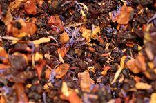 Free Tea Stock Photography - 8206682