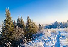 Winter Track Stock Photo