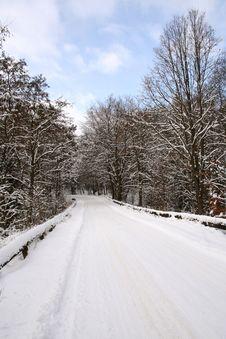 Free Winter Landscape Stock Photos - 8207943