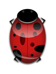 Free LadyBug Graphic Royalty Free Stock Photo - 8208315