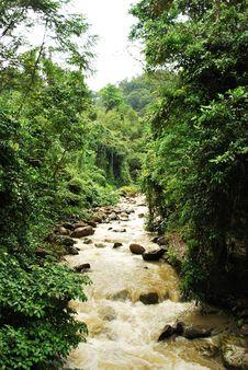 Free Sungai Mamut (Mamut River) Stock Photos - 8209273