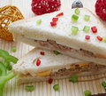 Free Sandwich Royalty Free Stock Photo - 8214085