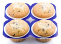 Free Tasty Muffins Royalty Free Stock Photography - 8217377