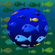 Free Fish Eye Stock Photo - 8210520