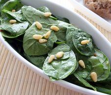 Free Fresh Salad Stock Photos - 8210993