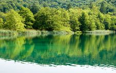 Free Lake In The Plitvice National Park Royalty Free Stock Photography - 8211707