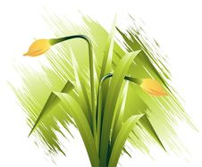 Free Spring Flowers Royalty Free Stock Photography - 8212487