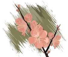 Free Spring Flowers Stock Photos - 8212773