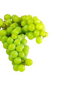 Clusters Of Fresh Green Grapes Stock Photo