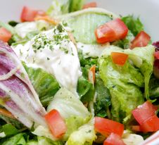 Free Mixed Salad Stock Photo - 8214050