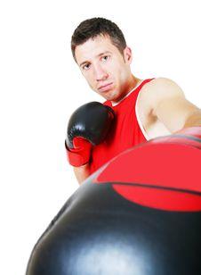 Free Boxer Stock Photo - 8215300