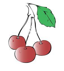 Free Sweet Cherry Stock Image - 8216341