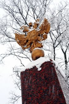 Double Eagle Under Snowfall Stock Image