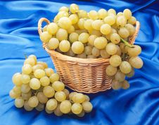 Free Grape In A Basket Royalty Free Stock Images - 8216449