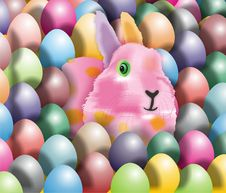 Free Easter Rabbit Stock Images - 8216484