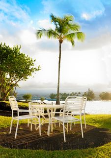 Free Deck Chairs With A Palm Tree Royalty Free Stock Image - 8217306