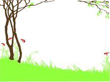 Free Spring Meadow Stock Photo - 8217770