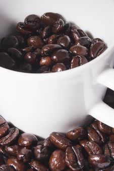 Free Cup Of Coffee Beans Stock Photos - 8219343