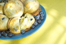 Free Blueberry Muffins By A Sunny Window Stock Photo - 8219370