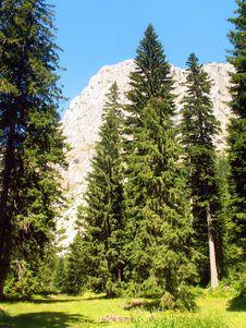 Free Durmitor National Park Stock Photos - 8220723